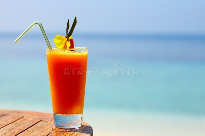 коктеил fruity стоковое фото