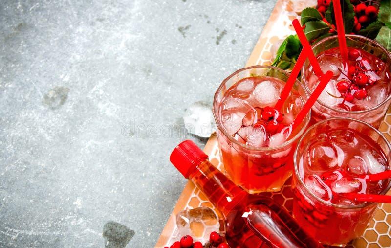 коктеил свежий стоковая фотография rf