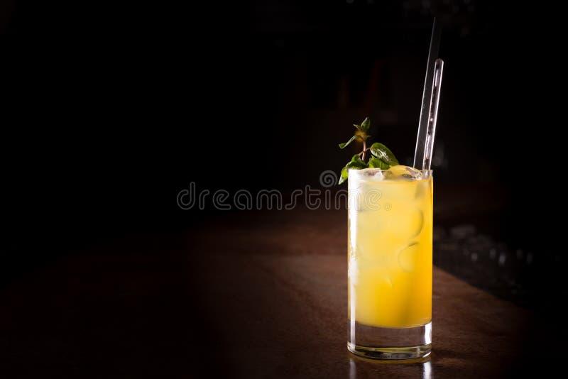 Коктеиль отвертки с свежей мятой стоковое изображение