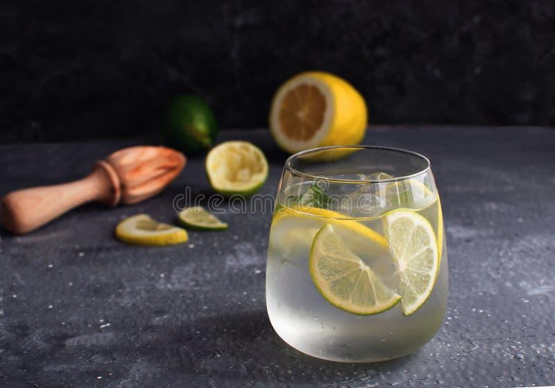 Коктейль алкоголя лимонада цитруса лета ловит тоника в западню со сжиманными лимоном и рейбором или juicer лимона стоковая фотография