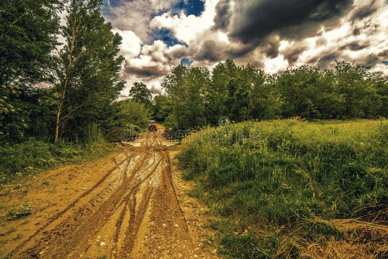 Колейности в грязи трактором стоковое изображение rf