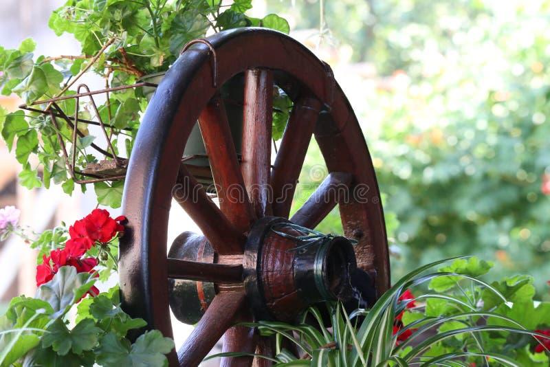 Колесо/старое деревянное колесо стоковая фотография rf