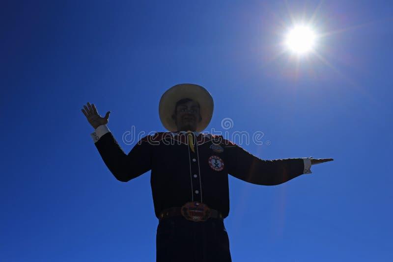 Колесо Ferris положения Техаса справедливое стоковые фотографии rf