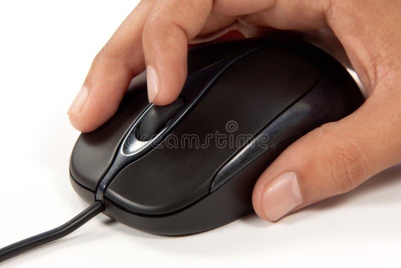колесо scrolling мыши компьютера стоковые фотографии rf