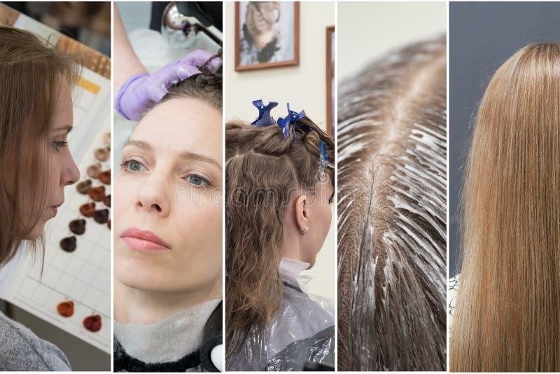 Коллаж в форме вертикальных нашивок показывая участки расцветки волос в салоне красоты стоковое изображение