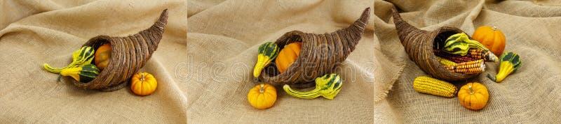 Коллаж концепции сезона благодарения изобилия стоковые фотографии rf