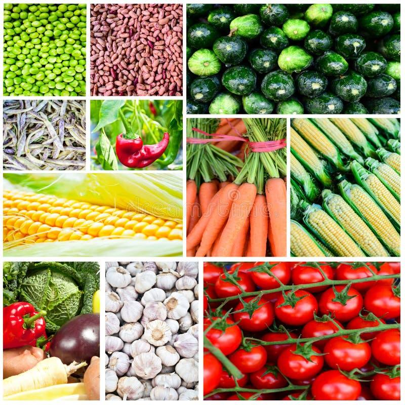 Коллаж овоща - группа в составе различные свежие овощи стоковое фото rf