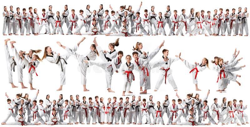 Коллаж о группе в составе дети тренируя боевые искусства карате стоковое изображение