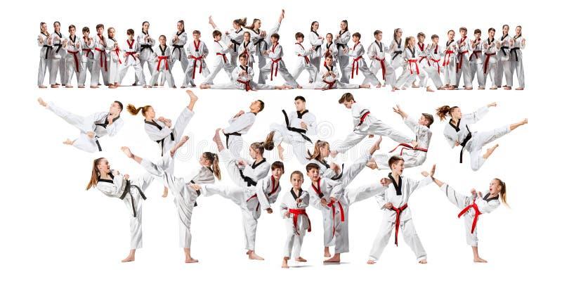 Коллаж о группе в составе дети тренируя боевые искусства карате стоковые фото