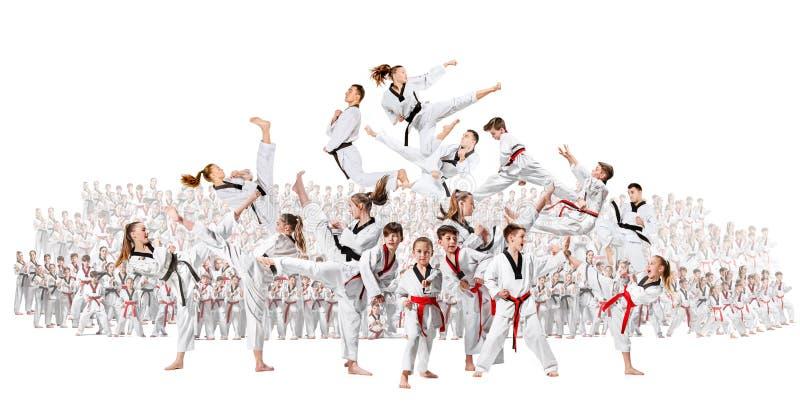 Коллаж о группе в составе дети тренируя боевые искусства карате стоковое фото rf