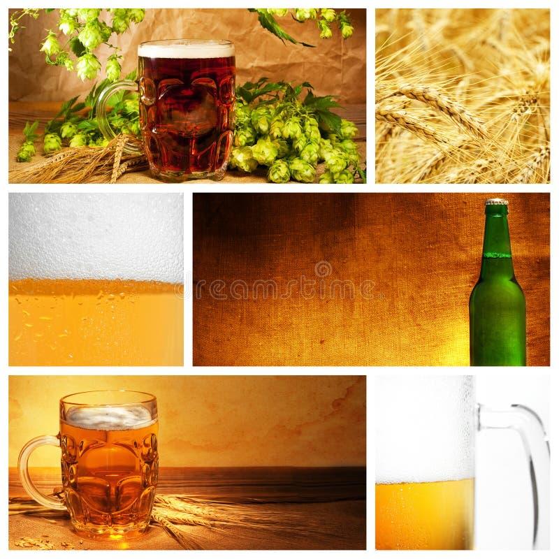 коллаж пива стоковое изображение rf