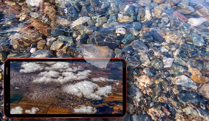 Коллаж солнечных медуз плавая в воду над камнями Чёрного моря и сотовый телефон показывая белые облака на экране стоковое фото rf
