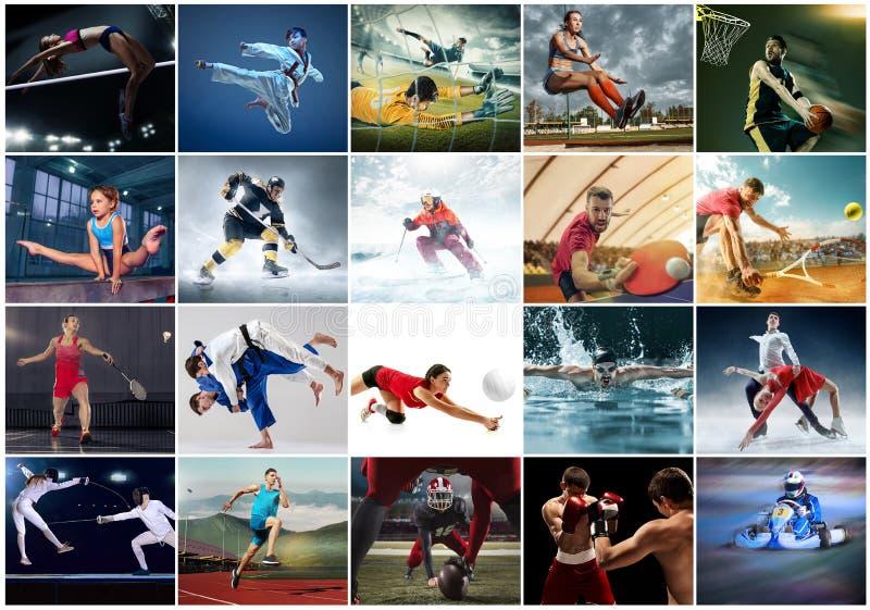 Коллаж о различном виде спорт стоковая фотография