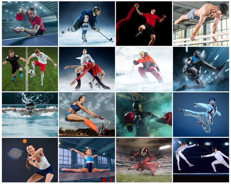 Коллаж о различном виде спорт стоковое фото rf