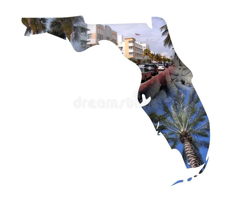 коллаж florida бесплатная иллюстрация