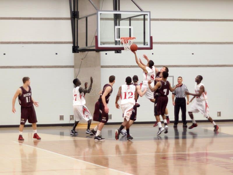 коллеж баскетбола стоковая фотография rf
