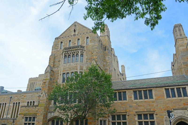 Коллеж Trumbull, Йельский университет, CT, США стоковое изображение rf