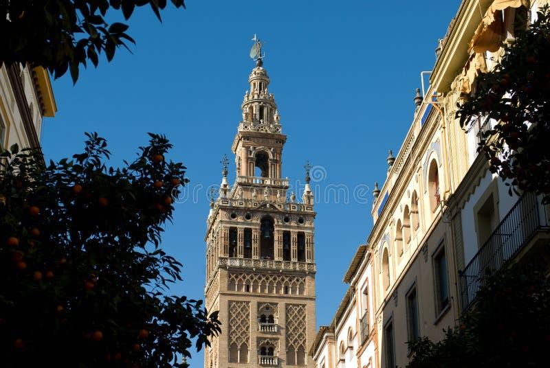Колокольня красивого готического собора Севильи, Испании стоковое фото