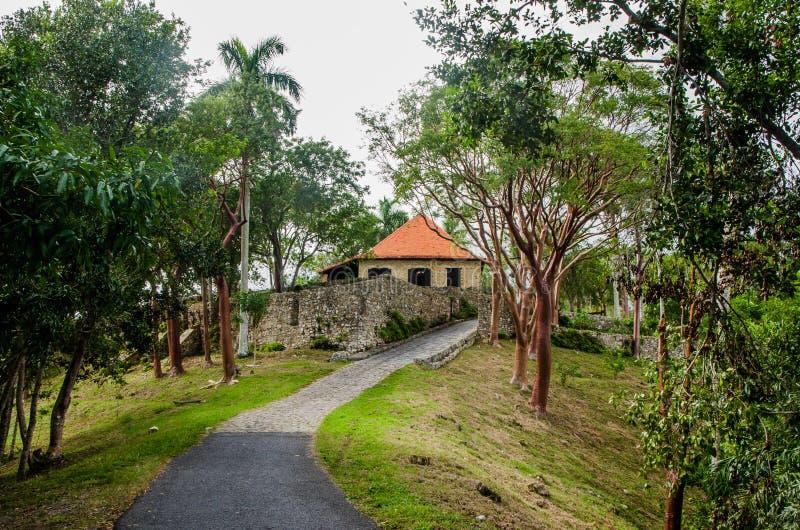 Колониальная кофейная плантация Куба 1 стоковая фотография