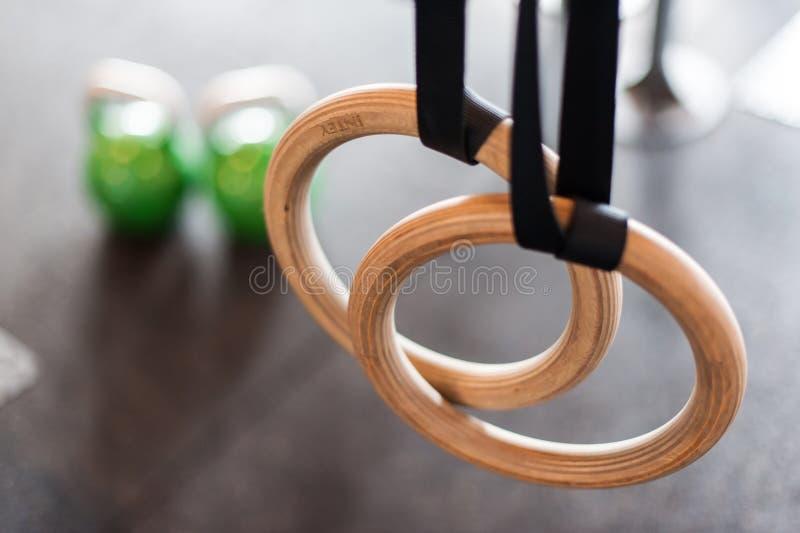 Кольца поворота с покрашенными гантелями в предпосылке стоковые изображения rf
