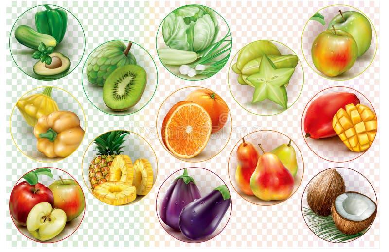 Кольца с фруктами и овощами иллюстрация штока