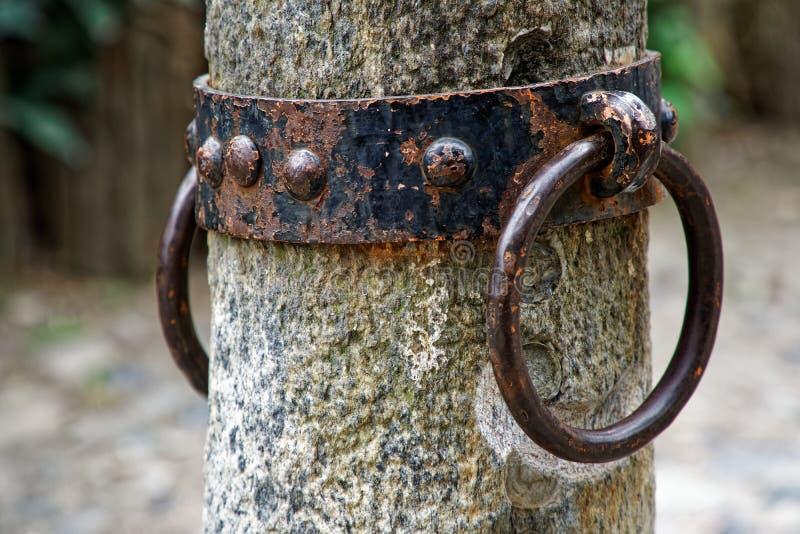 Кольцо для лошади, богато украшенное кольцо связи блокатора связи лошади утюга на фасаде средневекового замка, Турин, Италии стоковое фото rf