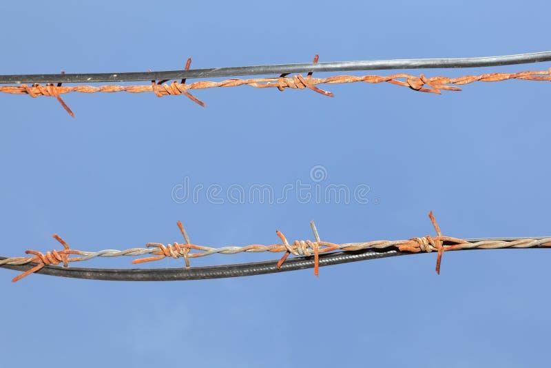 колючие проводы неба стоковые фотографии rf