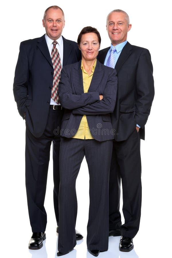 Команда возмужалого дела на белизне стоковое изображение