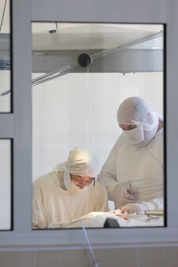 команда хирурга стоковое фото