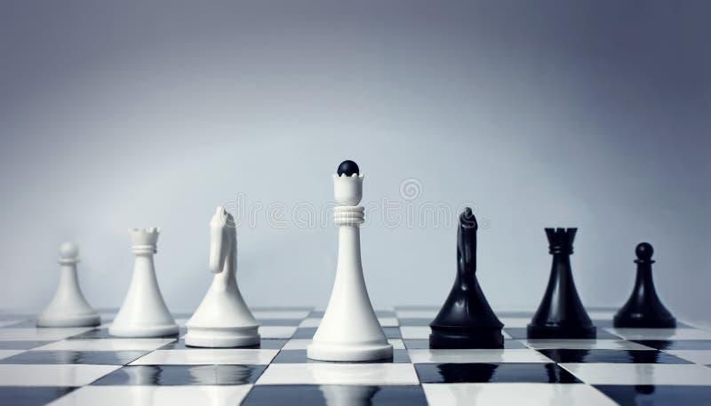 команда шахмат стоковые фотографии rf