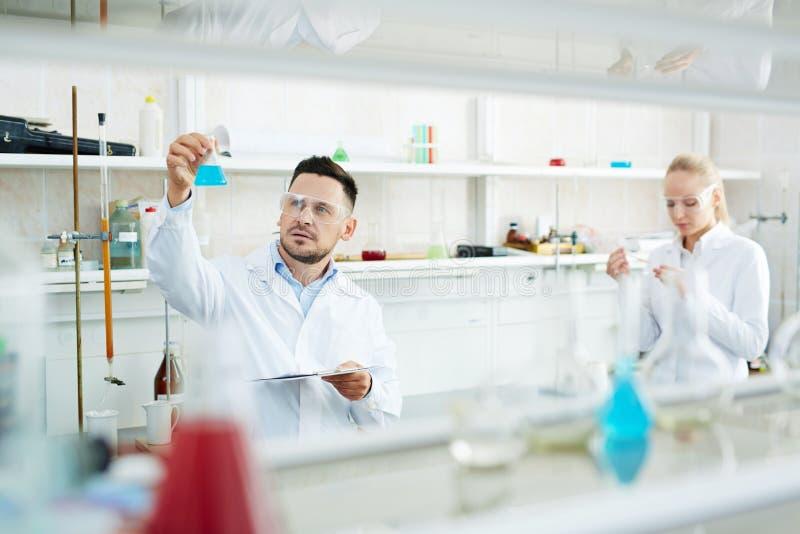 Команда ученых работая в химической лаборатории стоковое фото