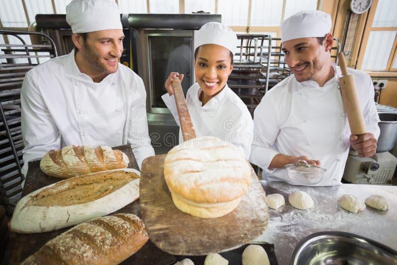 Команда хлебопеков работая совместно стоковое изображение