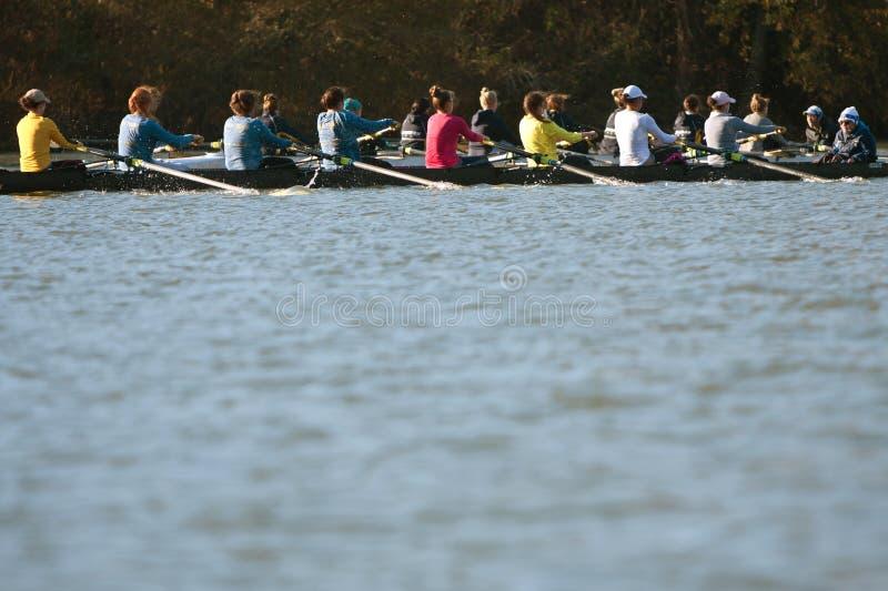 Команды экипажа коллежа женщин состязаются вдоль реки Атланты стоковое фото rf
