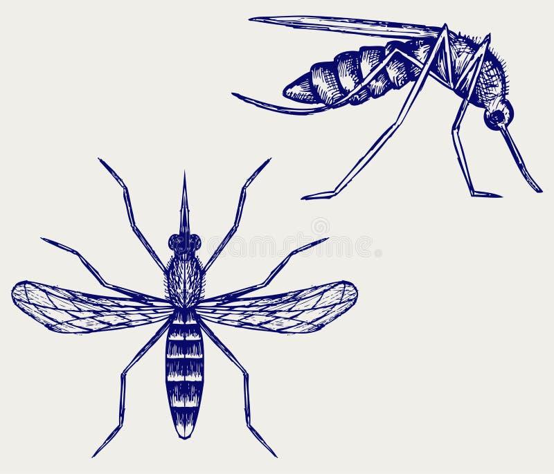 Комариные укусы иллюстрация вектора