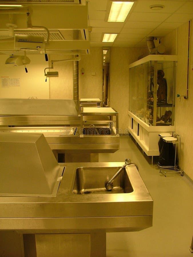 комната аутопсии стоковое изображение rf