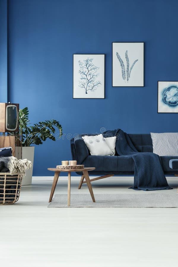 Комната с софой и ТВ стоковые изображения