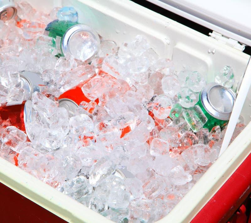 комод выпивает льдед стоковая фотография rf
