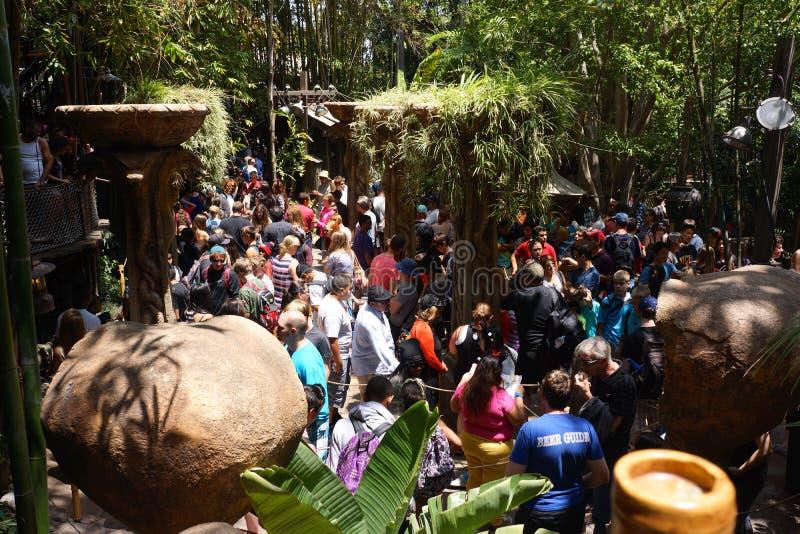 Компановка толп на привлекательности Дисней стоковое фото rf