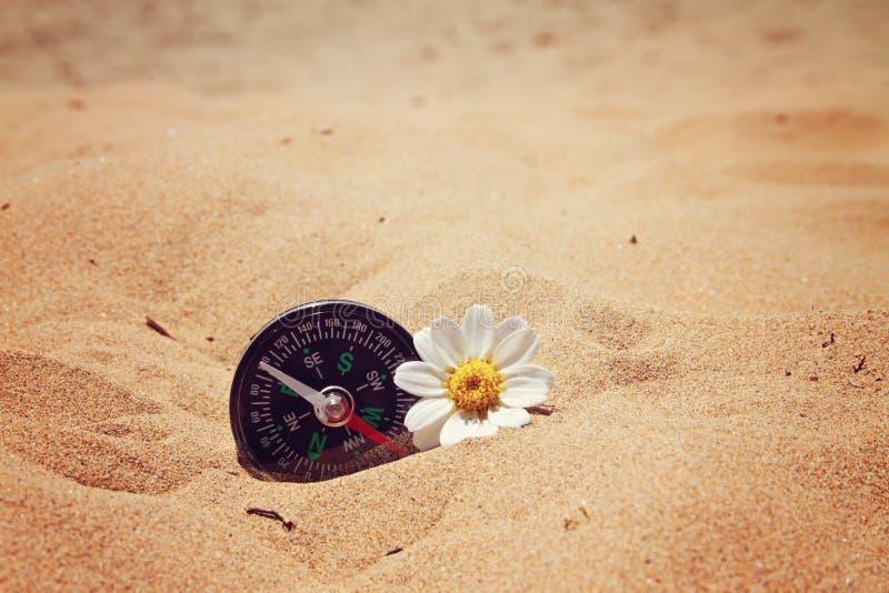 Компас на пляже стоковая фотография rf