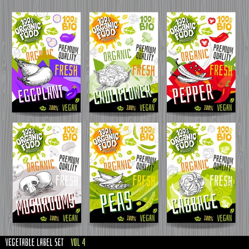Комплексное конструирование специй ярлыков овоща собрания стикеров набора ярлыка еды Цветная капуста, баклажан, перец, капуста гр иллюстрация штока