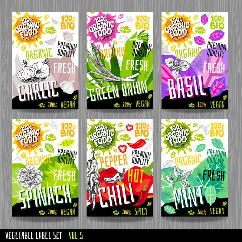 Комплексное конструирование специй ярлыков овоща собрания стикеров набора ярлыка еды Органическое свежее био eco Нарисованная рук иллюстрация штока
