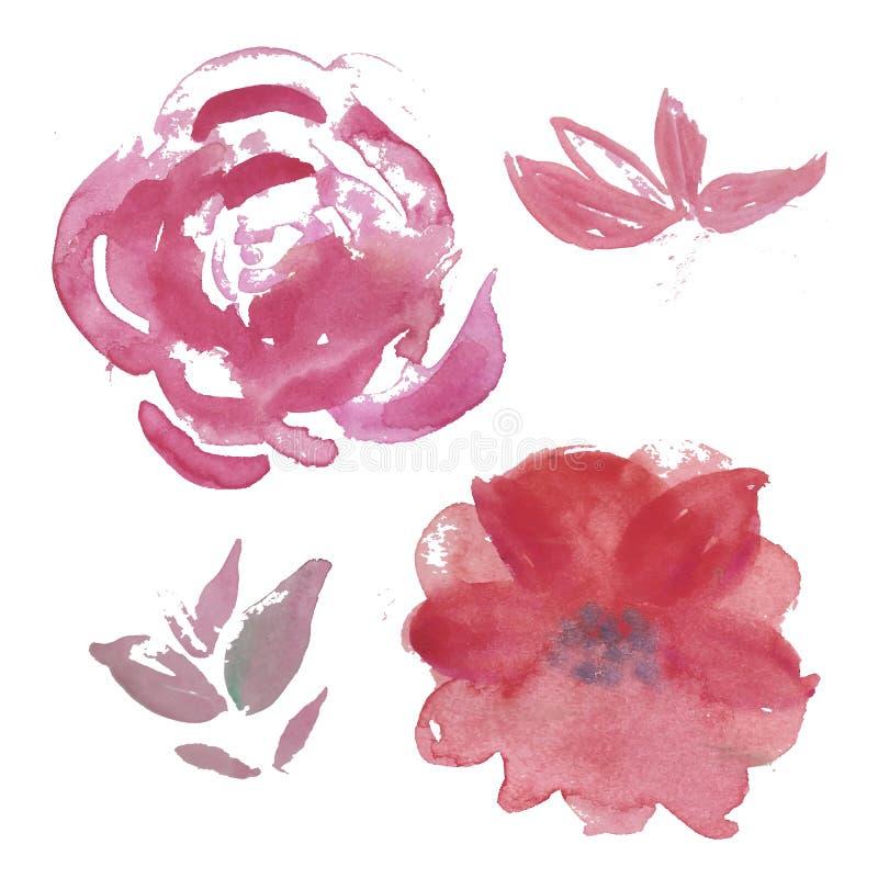 Комплект акварели света - пинк и сад сирени цветут: поднял Anemona бесплатная иллюстрация