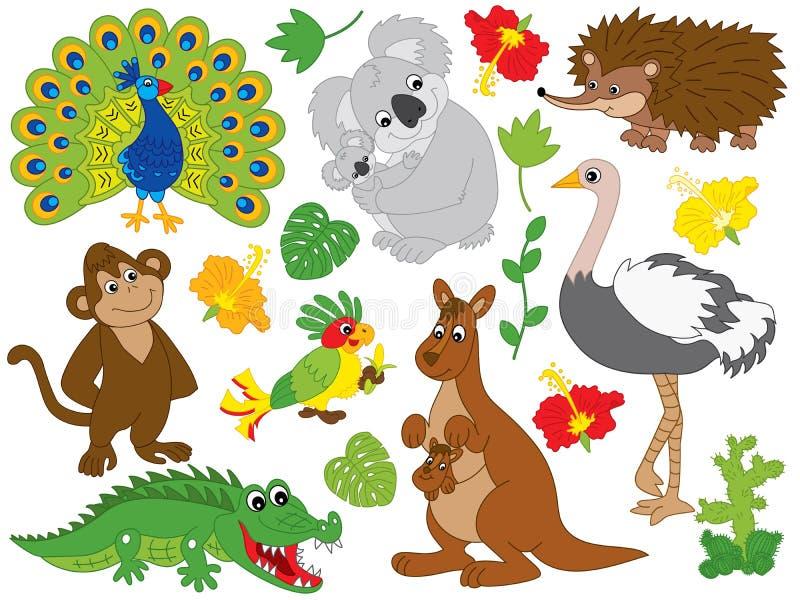Комплект вектора австралийских животных иллюстрация штока