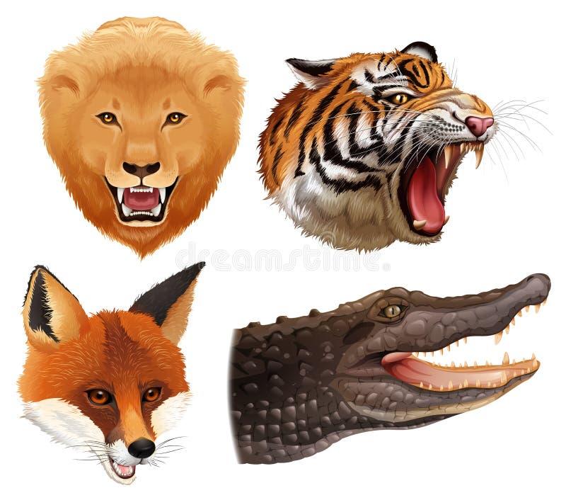 Комплект голов животных бесплатная иллюстрация