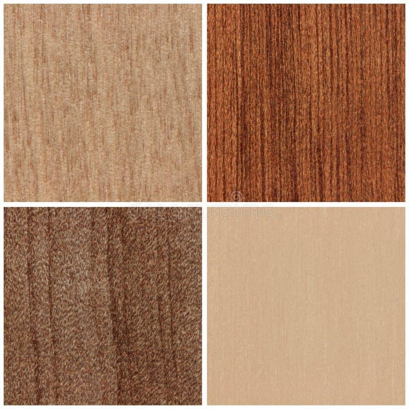 Комплект деревянных текстур стоковое фото