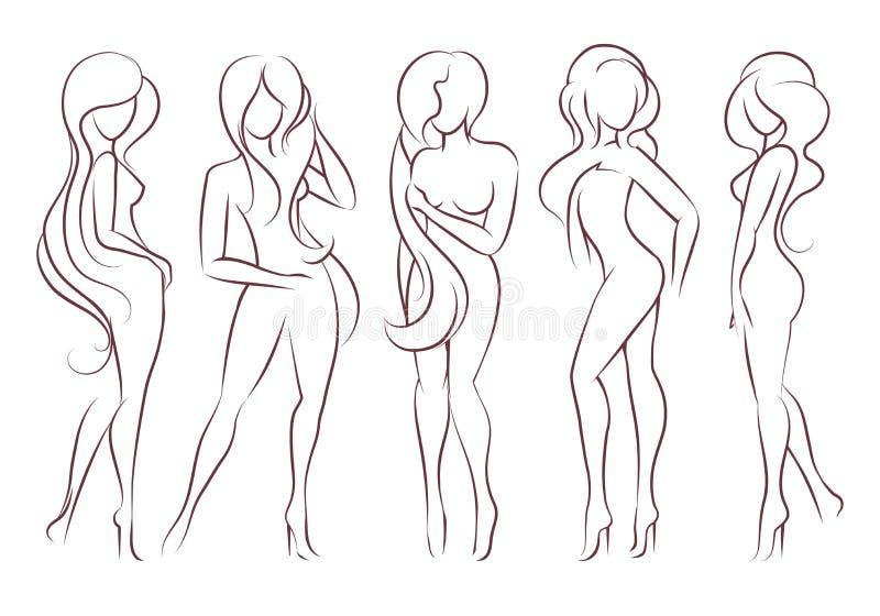 Комплект женских диаграмм иллюстрация вектора