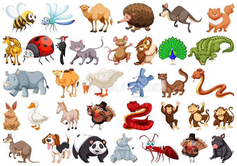 Комплект животного шаржа иллюстрация штока