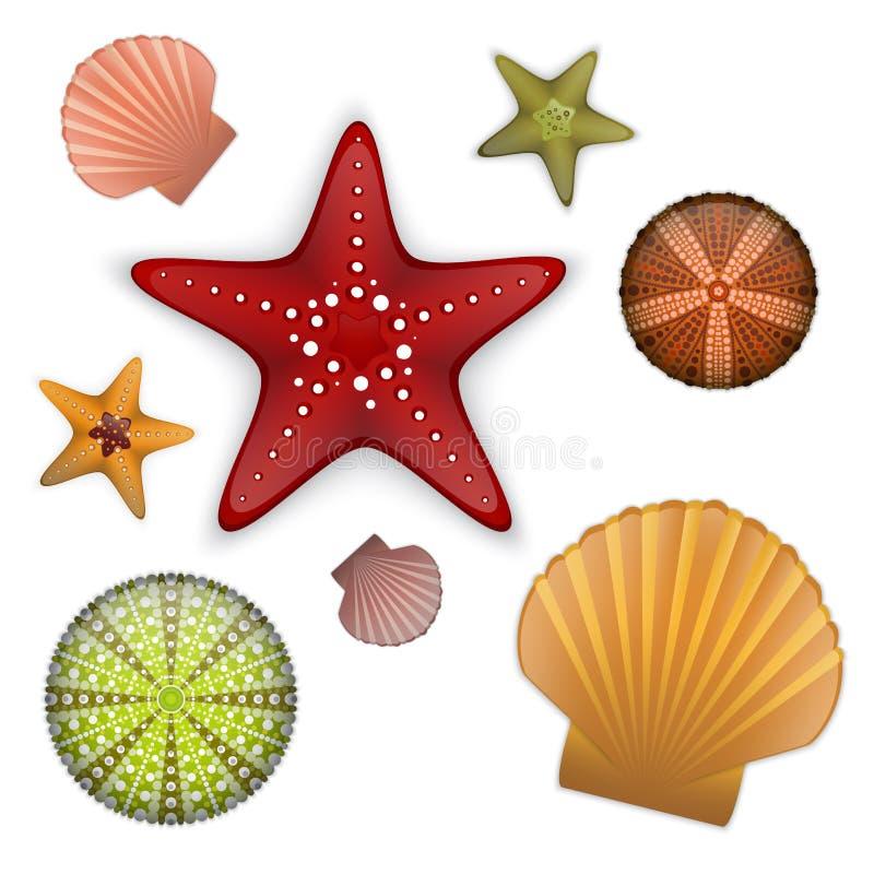 Комплект жизни моря иллюстрация штока