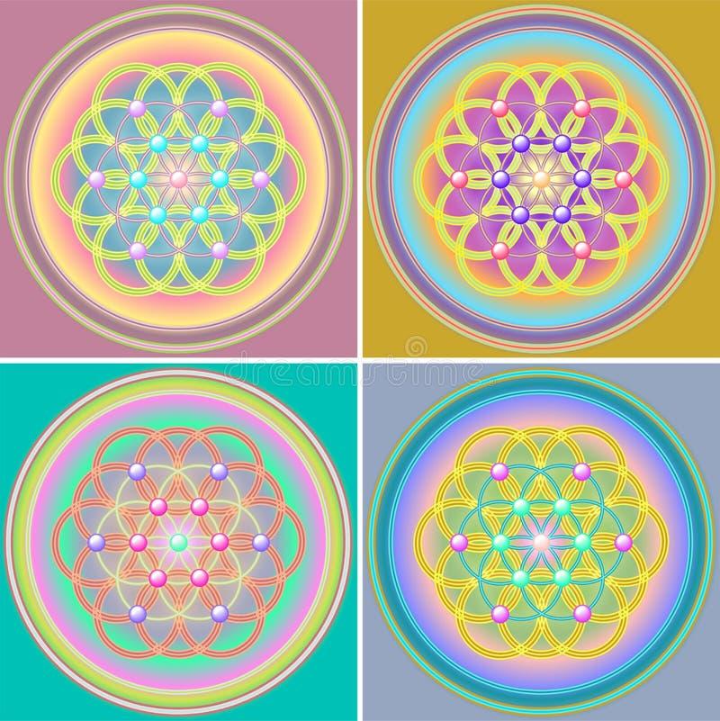 комплект жизни цветка стоковая фотография