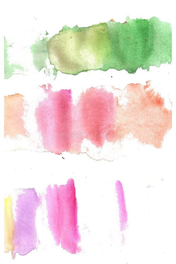 Комплект зеленого цвета акварели, поднял, прокладки желтого цвета изолированные на белой предпосылке иллюстрация вектора